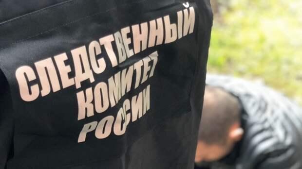 В Красноярском крае после года поисков нашли тело шестилетней девочки