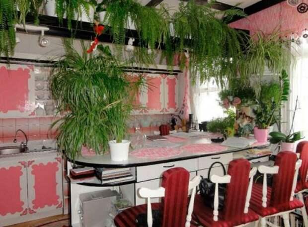 Самые странные и необычные кухни из всех, которые вы видели (37 фото)