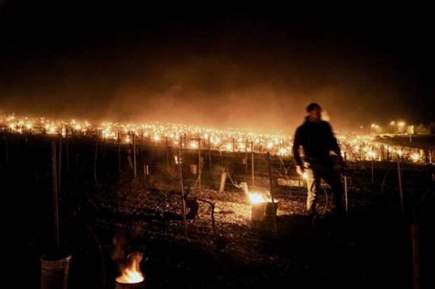 Фото дня. Французы создают «глобальное потепление» горящими бочками с парафином