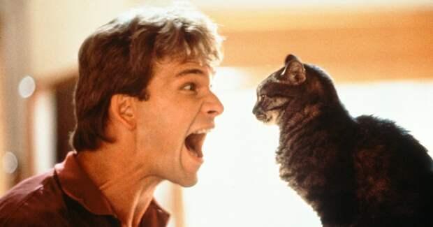 30 лет фильму «Привидение»: малоизвестные факты и знаковые кадры