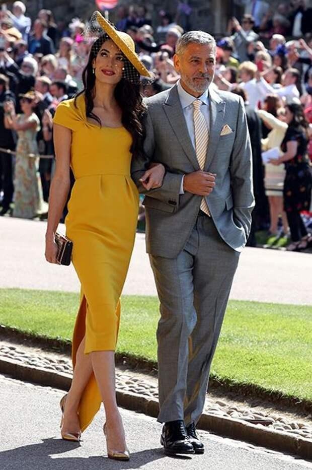 Амаль и Джордж Клуни   Nice dresses, Royal wedding dress, Wedding guest outfit