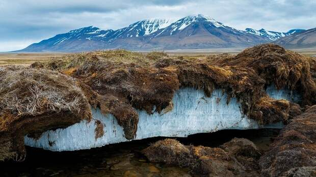Вечная мерзлота. Фото USGS.
