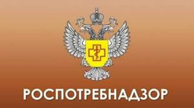 Роспотребнадзор ответил Медведеву на заявление о качестве товаров