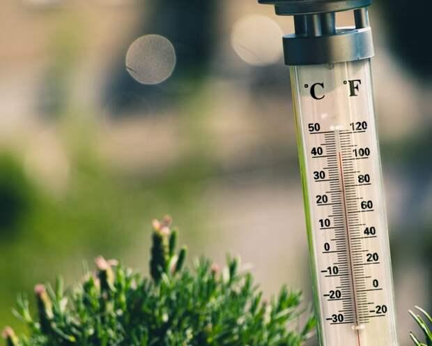 Потепление не повлияет на заразность коронавируса
