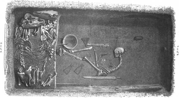Дева со щитом. Знаменитый викинг оказался женщиной