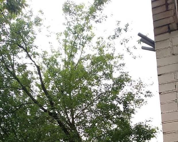 Сломанную ветку дерева вывезли с Верхоянской