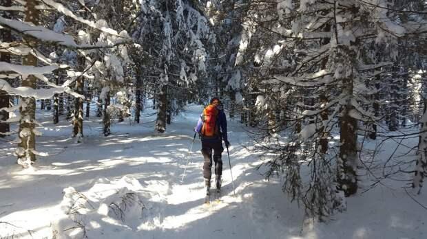 Торговцев с «Левши» на Новосходненском шоссе прогнали лыжники