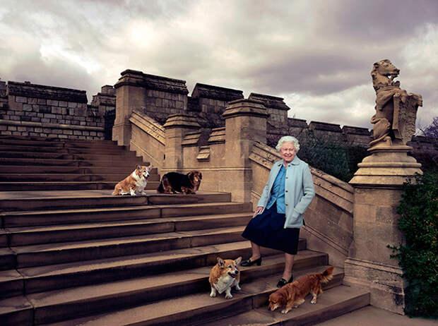 Портрет Королевы Елизаветы II и ее корги