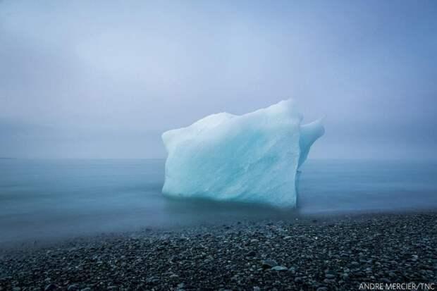 Конец близок. Обломок айсберга в исландских водах. Фото: Андре Мерсье (США), 2-е место.