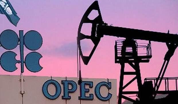 ОПЕК терзают сомнения вотношении перспектив спроса нанефть