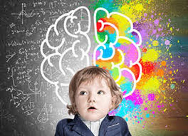 Развитие мозга у детей в первые годы - влияние воспитания и генов играют решающую роль