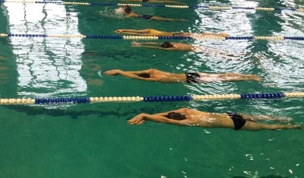 Тагильские пловцы готовятся к Чемпионату России и поборются за путевки на Олимпиаду