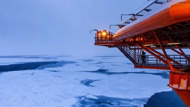 Надзорные органы проверят все производства вАрктике