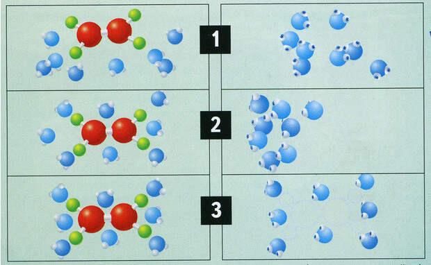 Фото №4 - Вода как воля и представление: несколько научных фактов, которые перевернут твое представление о воде