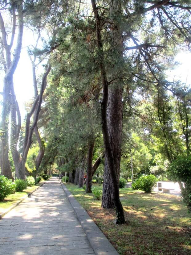 Кобулети.  Прогулка в Государственный заповедник Испани