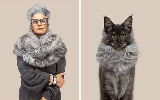 Мы с тобой одной крови: 12 котов и их люди-двойники