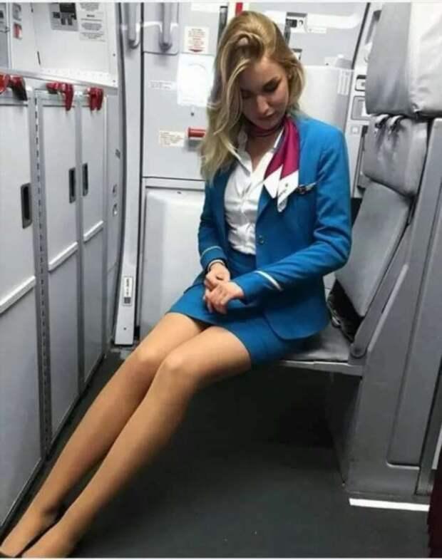 Ножки стюардесс. Подборка chert-poberi-styuardessy-chert-poberi-styuardessy-33360108022021-12 картинка chert-poberi-styuardessy-33360108022021-12