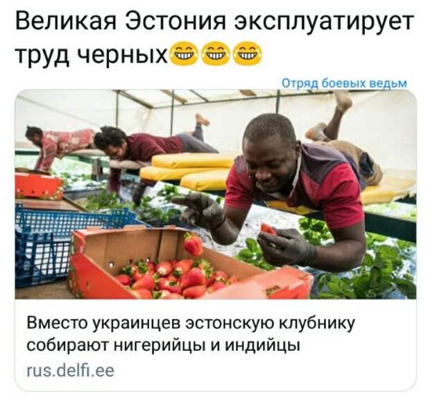 Украинским СМИ предписано подавать информацию о Крыме «с надрывом и скорбью»