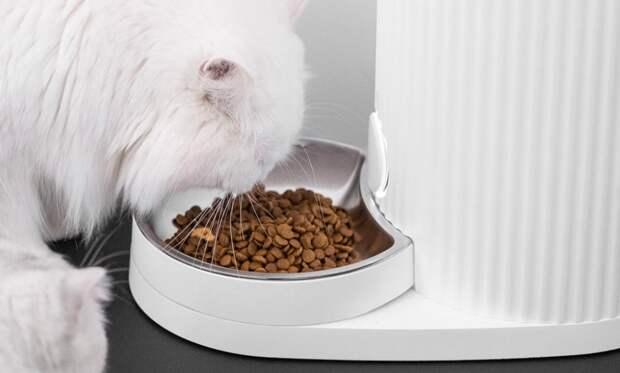 Xiaomi создала «умную миску», которая сама кормит кошек