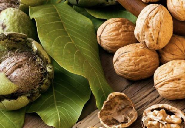 Едим орехи каждый день: перемены тела
