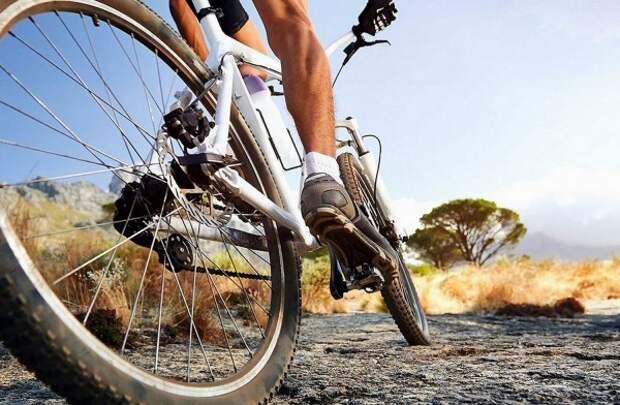 Велосипедистов хотят заставить платить транспортный налог