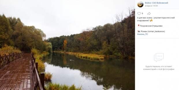 Фото дня: осенние краски в парке «Покровское-Стрешнево»