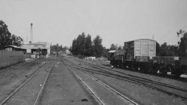 Uitenhage, 1895. Вид с поезда на станцию. Слева - хозяйственные помещения / Источник: atom.drisa.co.za