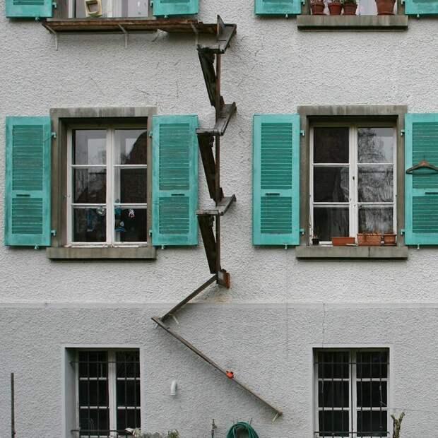 В Швейцарии делают специальные лестницы для кошек берн, городское пространство, интересно, кошки, лестницы, приспособления, традиция, швейцария