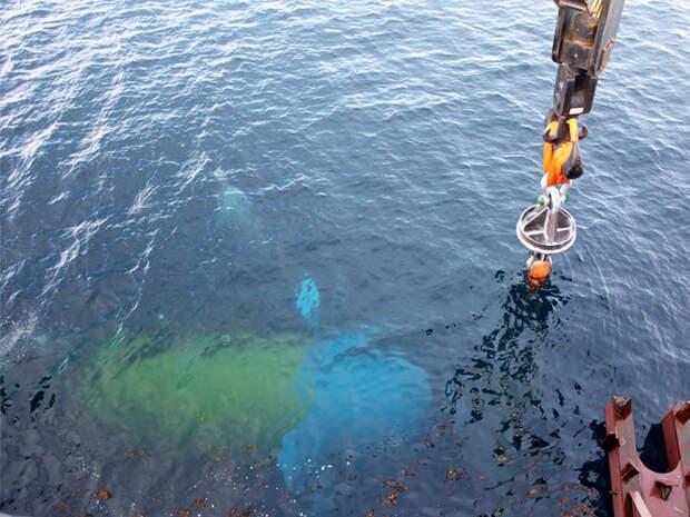 Заставить океан работать: система, которая позволит получать колоссальную энергию