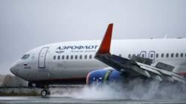 «Аэрофлот» обвинили в нарушении правил перевозки животных