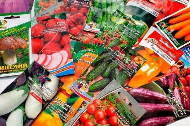 Храните семена вместе с пакетиками силикагеля / Фото: semena74.com