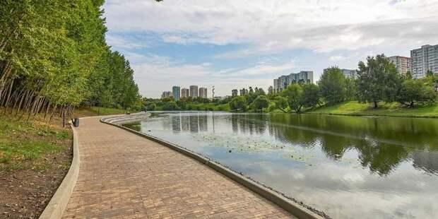 Горожане помогут специалистам благоустроить районы Москвы