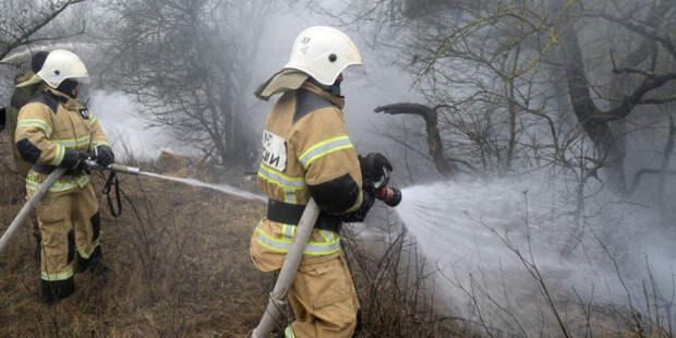 Жара может привести к лесным пожарам в 14 регионах России