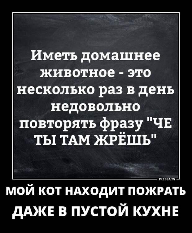демотиваторы +