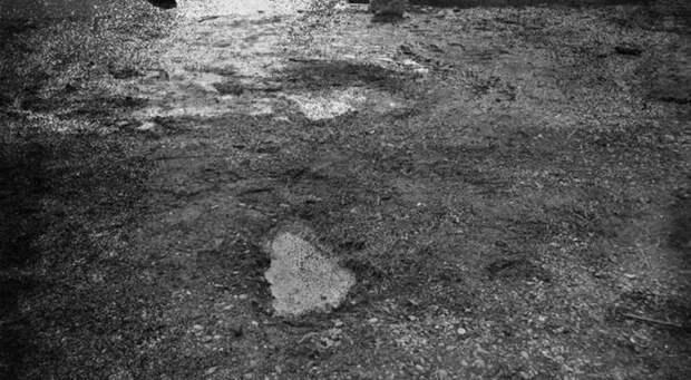 В Техасе нашли следы снежного человека