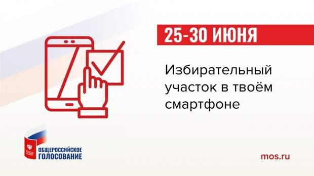 Проголосовать по изменениям в Конституции можно будет традиционно и дистанционно