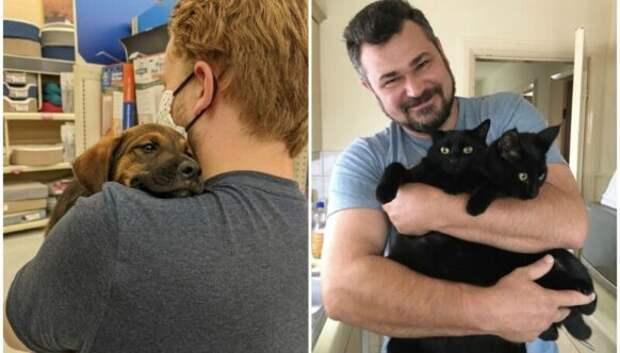35 животных из приютов, которым очень повезло встретить «своего» человека