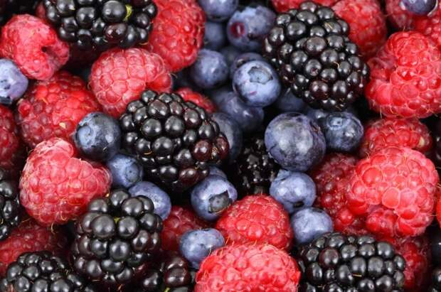 Для пациентов хосписа «Дегунино» собирают свежие ягоды