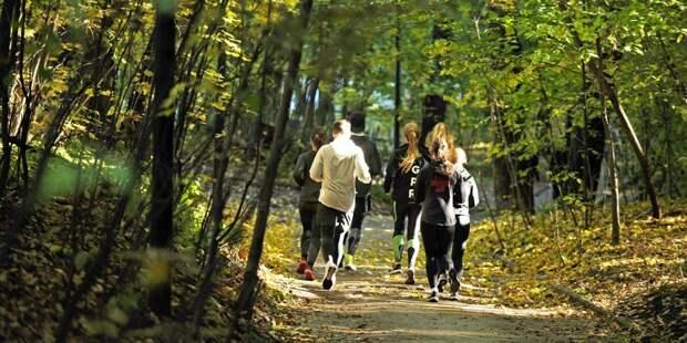 В парке «Северное Тушино» возобновили субботние пробежки
