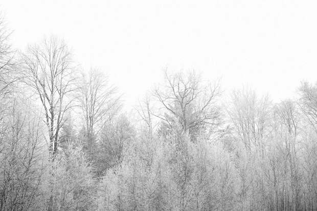 27 января в Удмуртии похолодает до -13 градусов