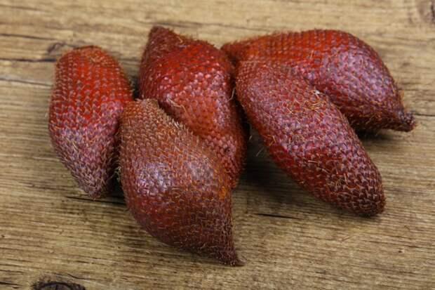 Змеиный фрукт еда, мир, необычный, путешествия, страшный, фрукты