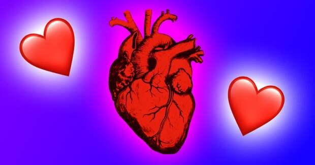 Почему ❤ не выглядит реалистично? 4 факта о происхождении символа сердца