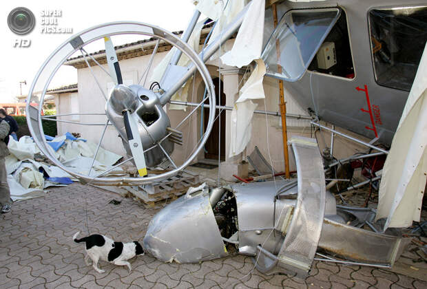 Франция. Туретт,  Лазурный берег. 22 января 2008 года. Собака обнюхивает повреждённый дирижабль французского изобретателя Жана-Луи Этьена. (AP Photo/Lionel Cironneau)