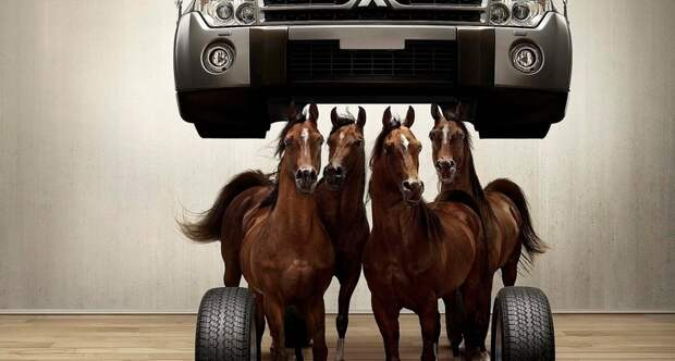 Creative wallpaper horses under the hood 015979