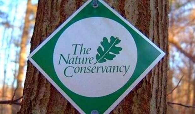 Ненавязчивый бизнес на«зеленых» индульгенциях: американских экологов подозревают внеобоснованной торговле углеродными квотами
