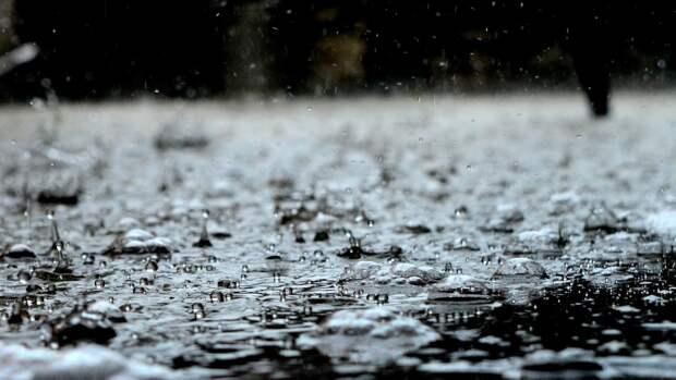 Конец недели принесет в Москву облачную погоду и осадки