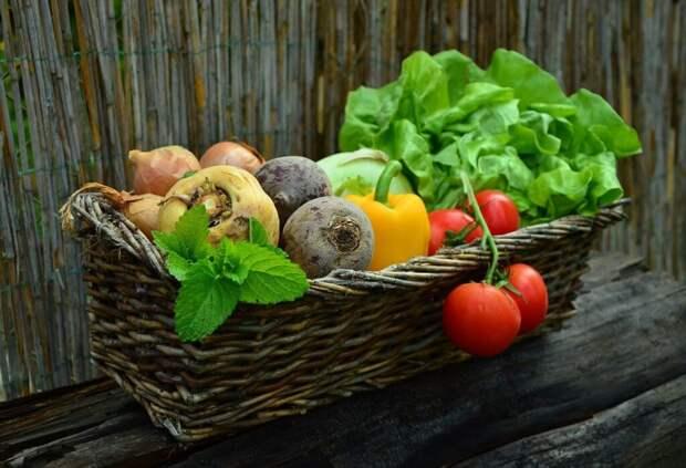 vegetables-752153_1280-1024x700 Как правильно хранить фрукты и овощи дома