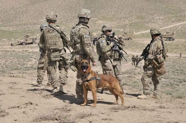 Пекин раскритиковал вывод американских войск из Афганистана