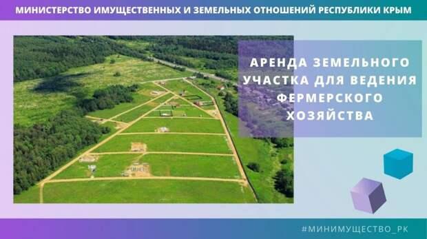 Минимущество Крыма предоставляет в аренду земельные участки для выращивания зерновых культур в Джанкойском и Раздольненском районах