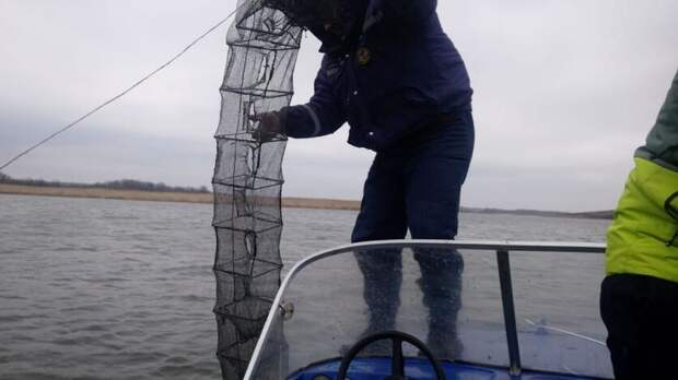 Ростовских спасателей подключили котслеживанию браконьеров навремя нереста рыбы